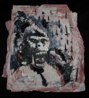 2011-11-01_Darwin